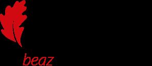 Beaz Bizkaia
